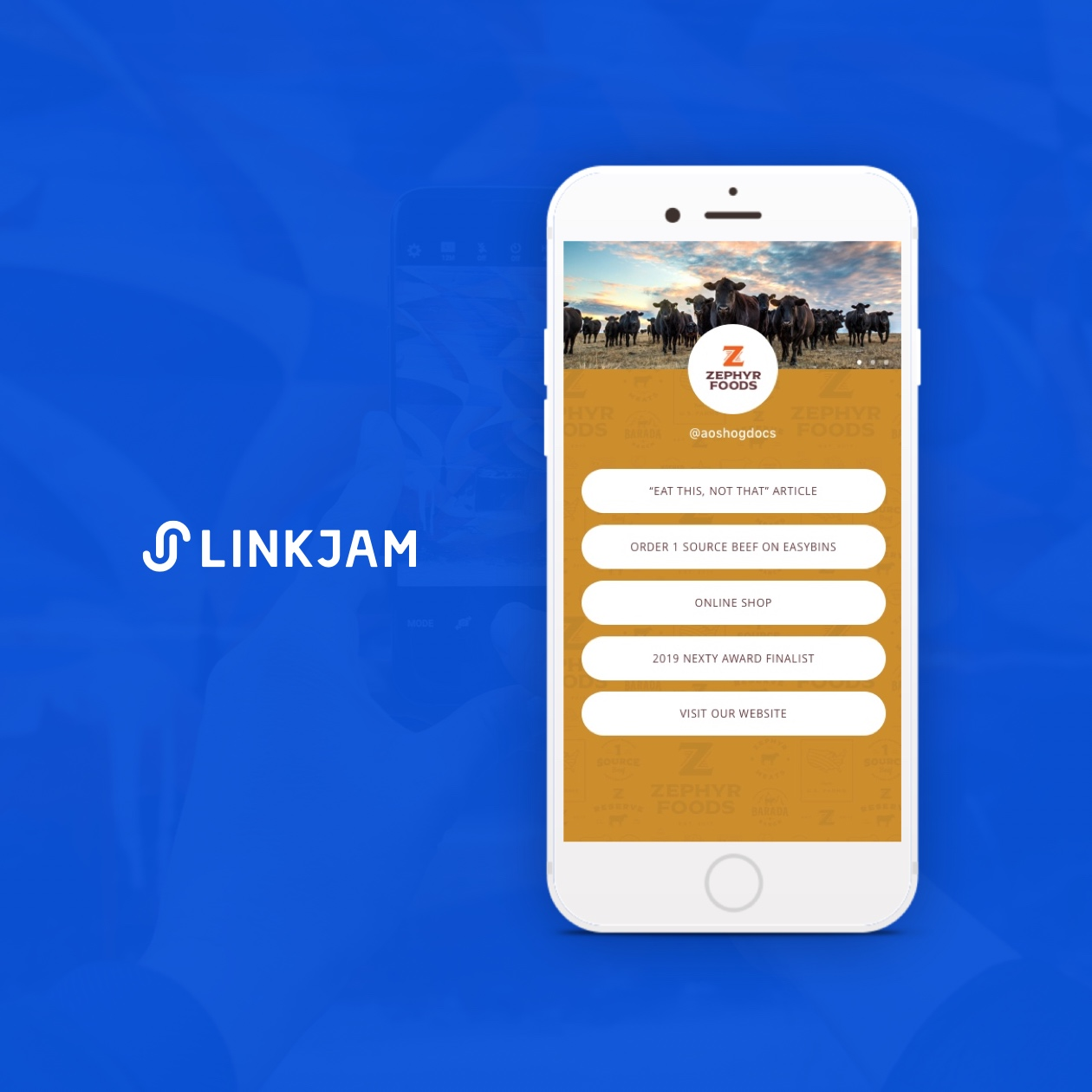linkjam screenshot with zephyr foods
